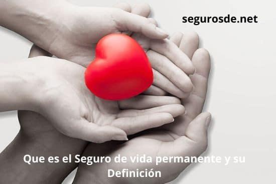 Que es el Seguro de vida permanente y su Definición